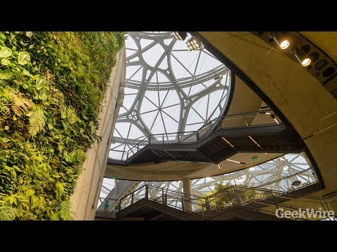 First look inside the Amazon Spheres