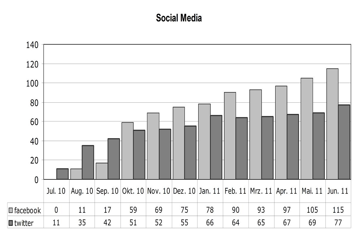 Social Media Juni 2011
