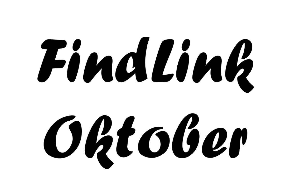 FindLink Oktober 2011