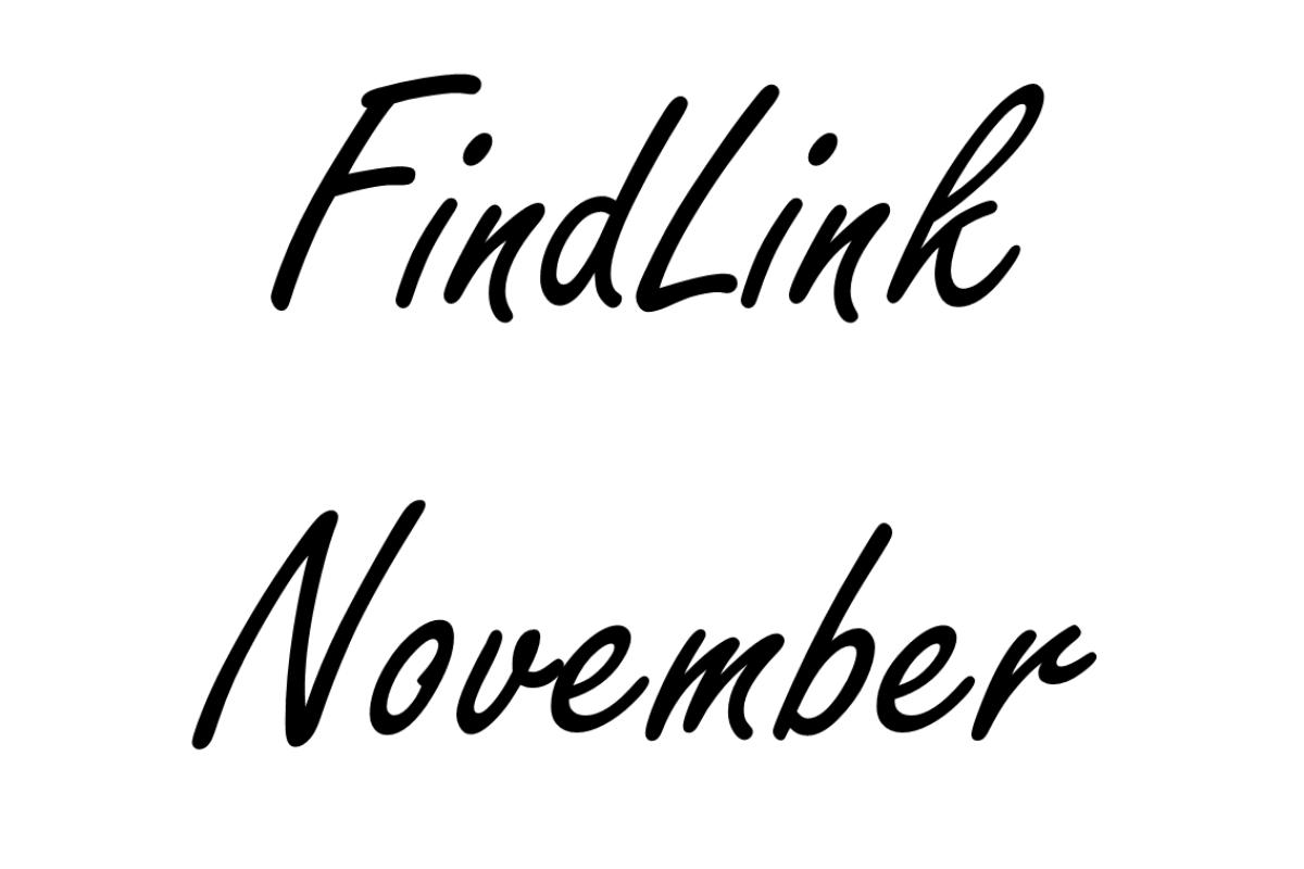 FindLink November 2011