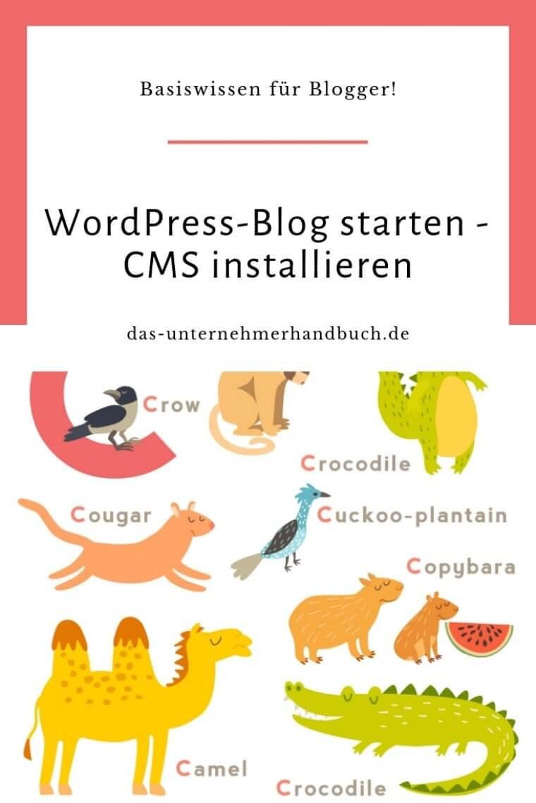 Selbstgehosteten WordPress-Blog starten – Content Management System installieren