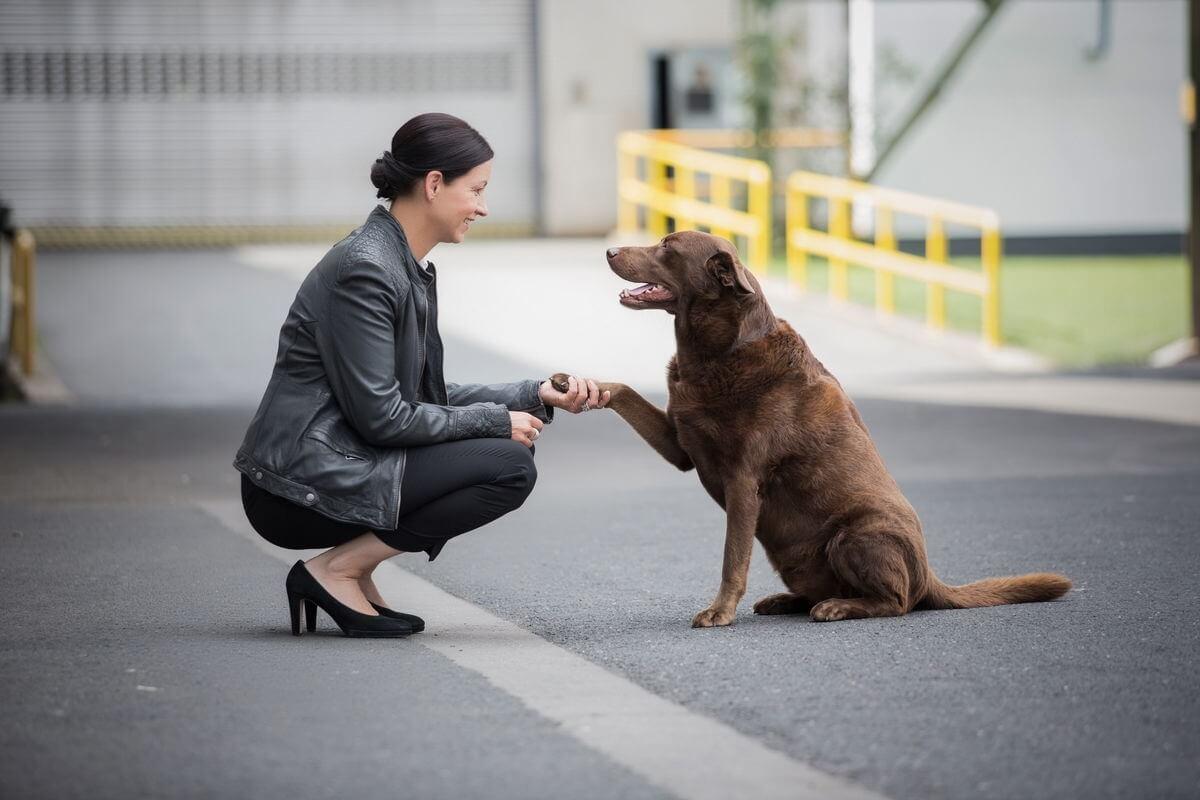 Michaela Knabe, Hunde, Führung, Haltung, Kompetenz