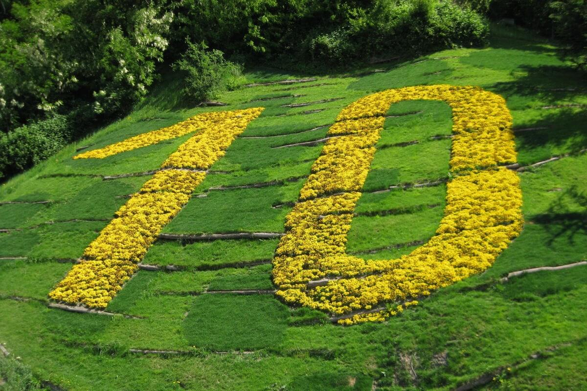 Existenzgründung: die 10 Top-Beiträge 2019