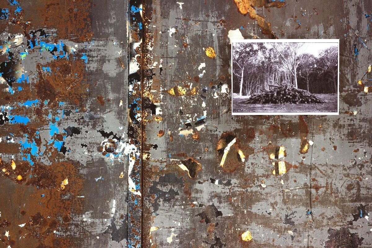 Kopierer, Xerographie, Kopien