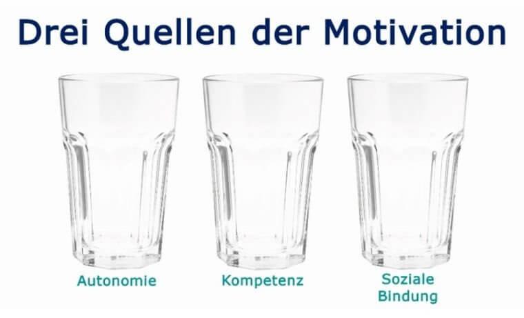 Die 3 Quellen der Motivation / Sandra Schubert