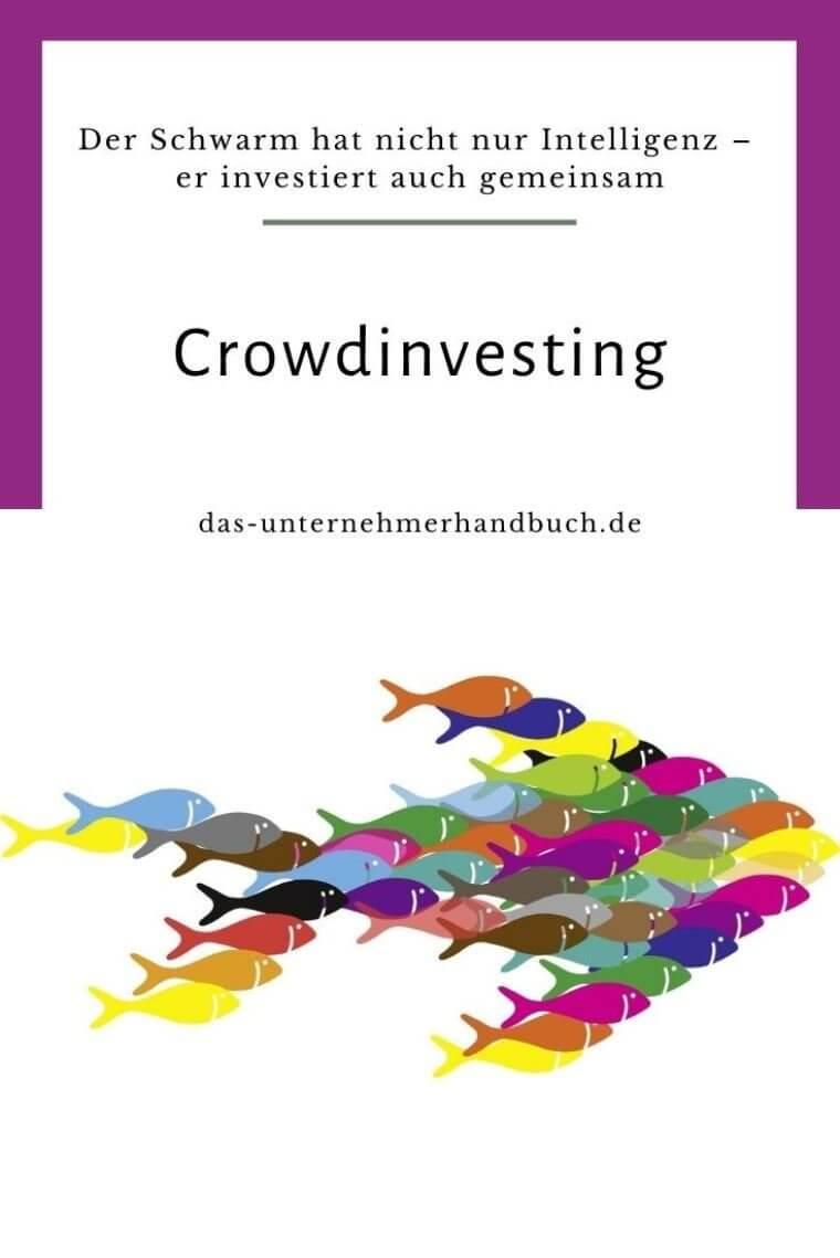 Crowdfunding, Crowdinvesting