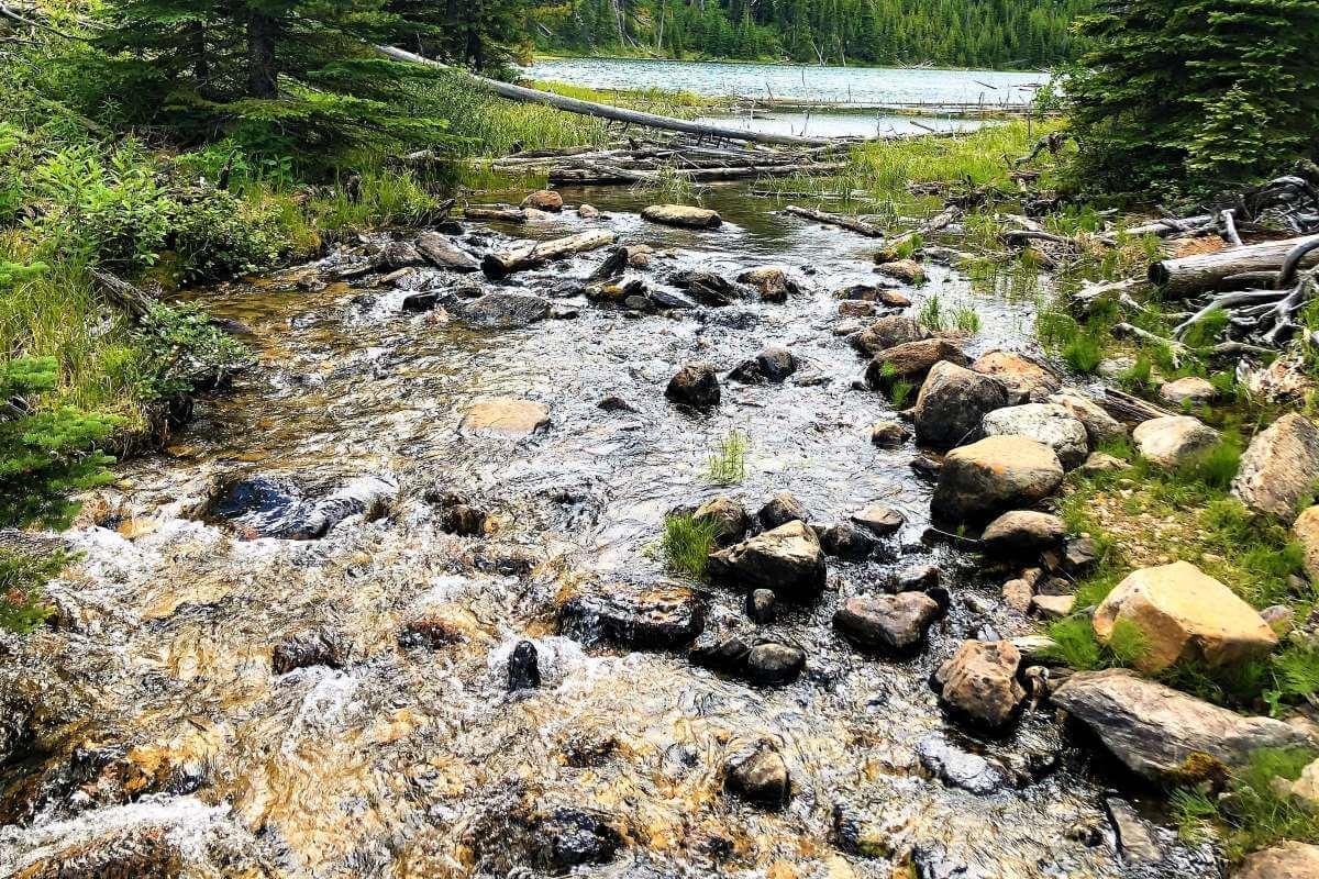 Wasser, Lean Leadership